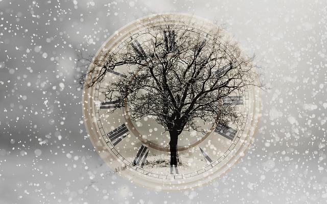 snow-2910676_640