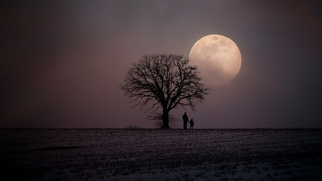 winter-2945906_640